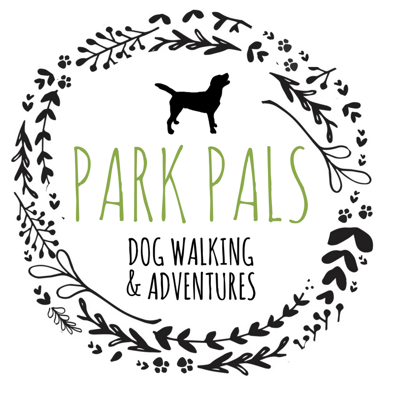 Park Pals Dog Walker Service - Sheffield
